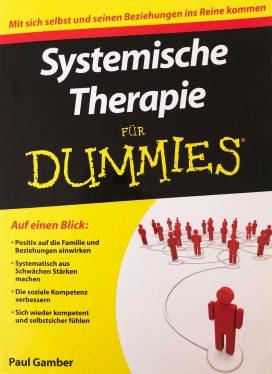 Systemische Therapie für Dummies