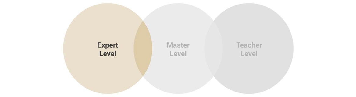 Expert Level Zertifizierung der Coaching Akademie Berlin