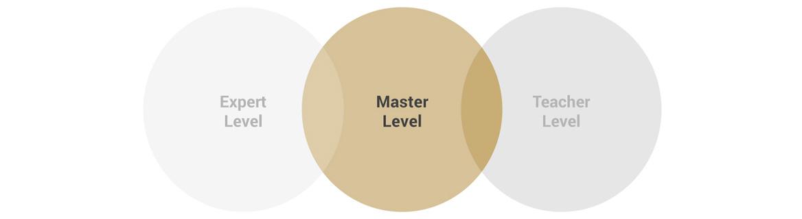Master Level Zertifizierung der Coaching Akademie Berlin
